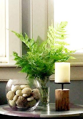 ferns, sea urchins, pottery, beach decor, summer house