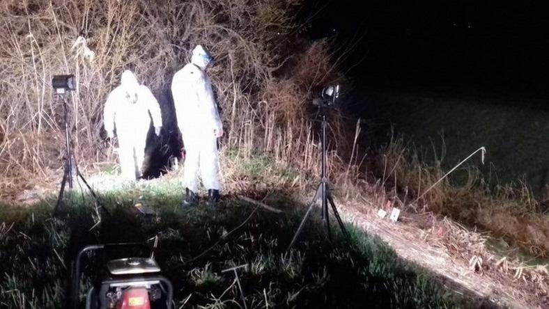 77518290c5 ... Járásbíróság nyomozási bírájához annak a 19 éves szekszárdi férfinak a  letartóztatására, akit szombaton vettek őrizetbe a rendőrök az előző este  holtan ...