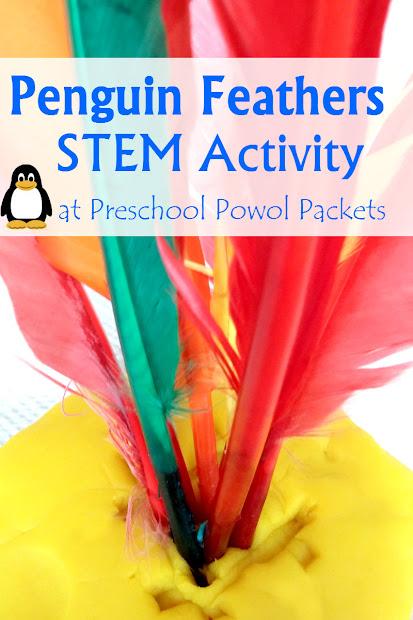 Stem Preschool Feather Activity