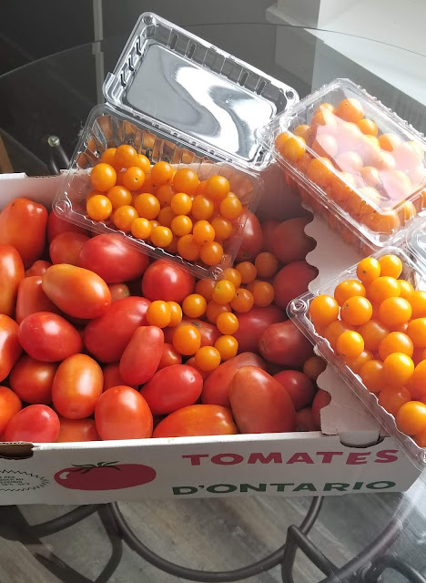 Time to order Sauce Tomatoes AND bulk SUN SUGAR CHERRY tomatoes!!!