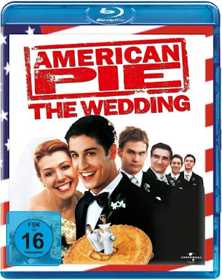 American Wedding 2003 Dual Audio BRRip 480p 300Mb x264