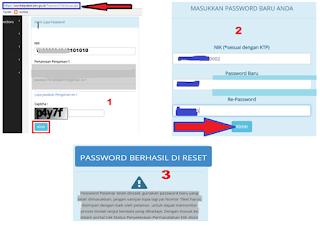 Cara Mudah Reset Password login sscn.bkn.go.id