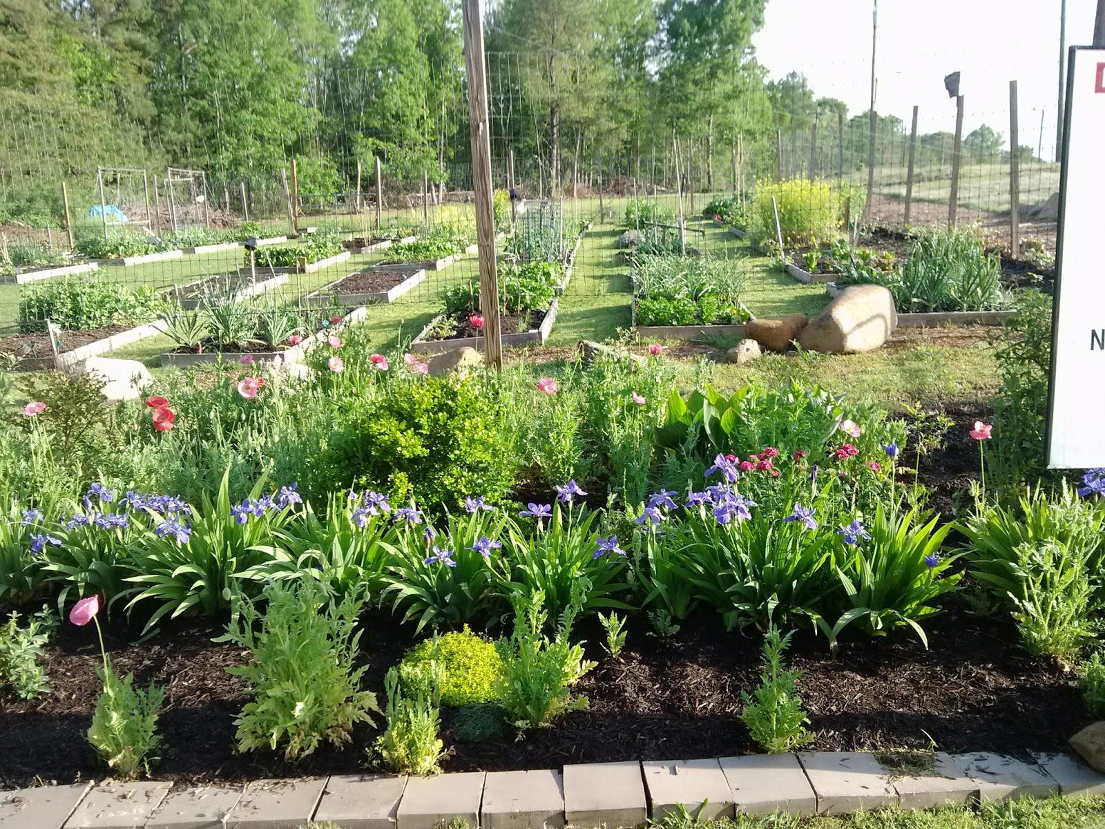 Durham Council of Garden Clubs Free Summer Harvest