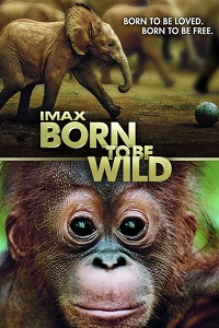 Watch Born to Be Wild Online Free in HD