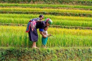 Puisi Untuk Ibu Oleh Aditya Ansor Alsunah Kertasari Bandung