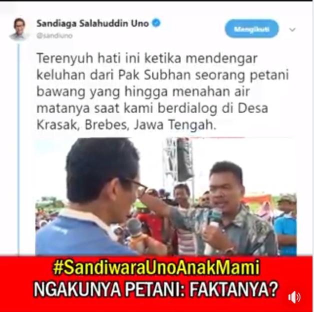 SANDIWARA UNO, POHON BAWANG TUMBUH DI HIDUNG