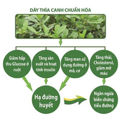 [Image: day-thia-canh-khac-tinh-cho-nguoi-tieu-duong.jpg]