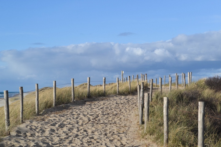 Dunes in Egmond aan Zee, Noordholland