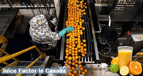 Juice Factory Jobs in Canada - worldswin   Find latest jobs in