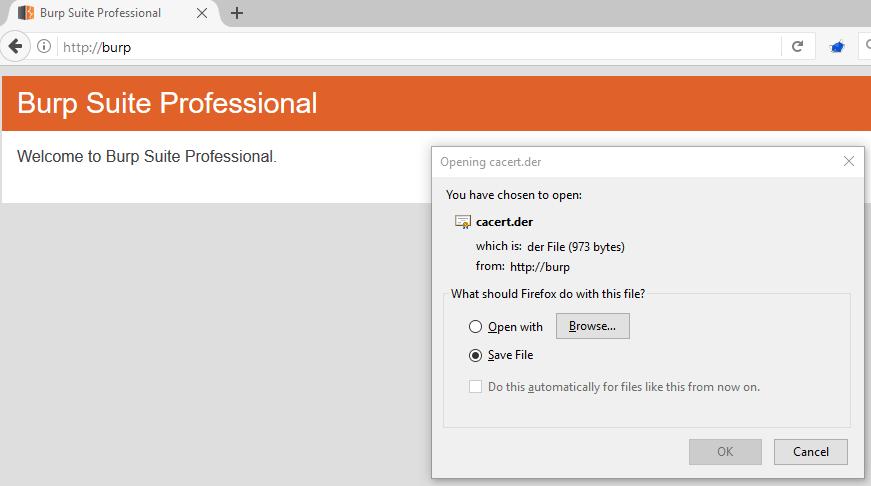 ทำให้ Burp สามารถ intercept HTTPs ได้ด้วย Firefox (Howto