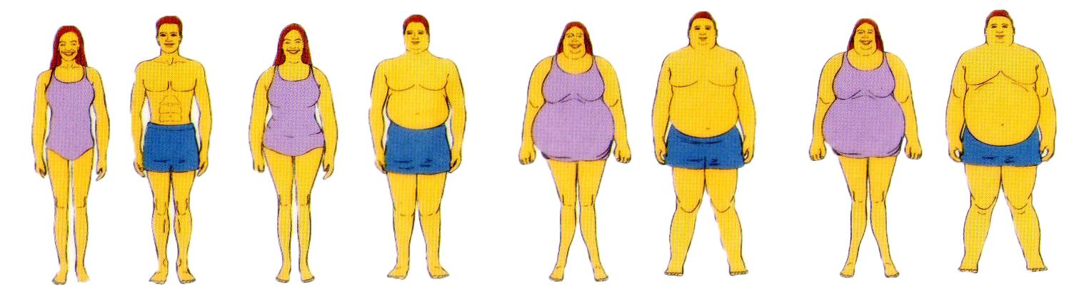 Berat badan ideal untuk tinggi 150, 158, 163, 165 cm