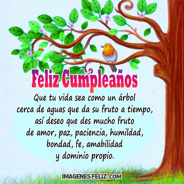 Feliz Cumpleaños Frases Largas Filosóficas Bonitas