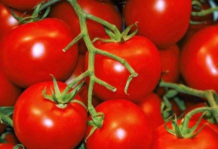 5 Olahan Tomat yang Sehat dan Lezat, Yakin Gak Doyan?nusaplay login
