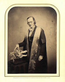 Black and white photo of Richard Owen wearing and academic robe and holding his hand on an animal skull. Owen is balding, hollow cheeked, and has a stern expression on his face.
