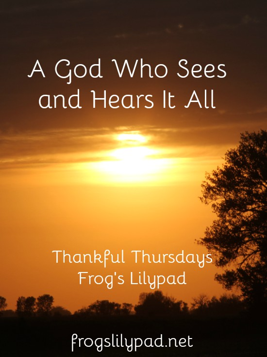 We have a God Who Sees and Hears It All - even the mess that is going on in the world. frogslilypad.net