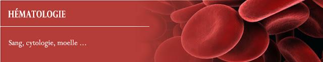 cours Hématologie pdf gratuit