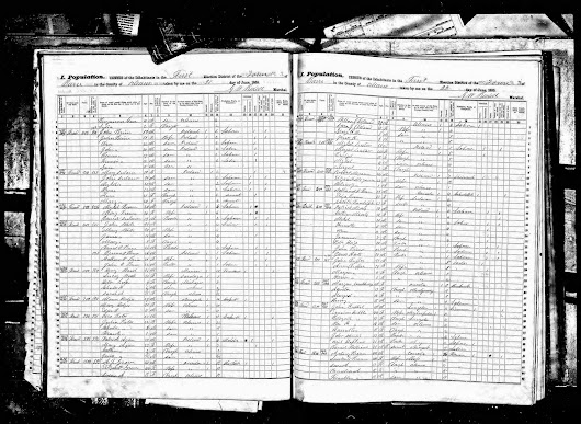 Patrick Eagan and Family in the 1855 NY State Census
