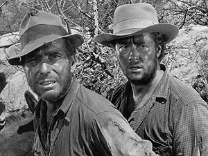 A review of treasure of the sierra madre a movie by john huston
