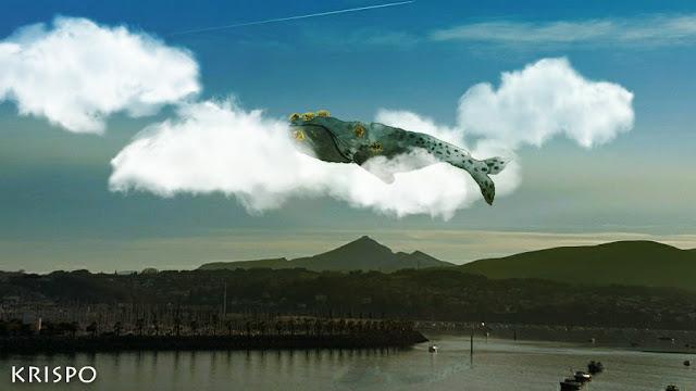 ballena surcando el cielo