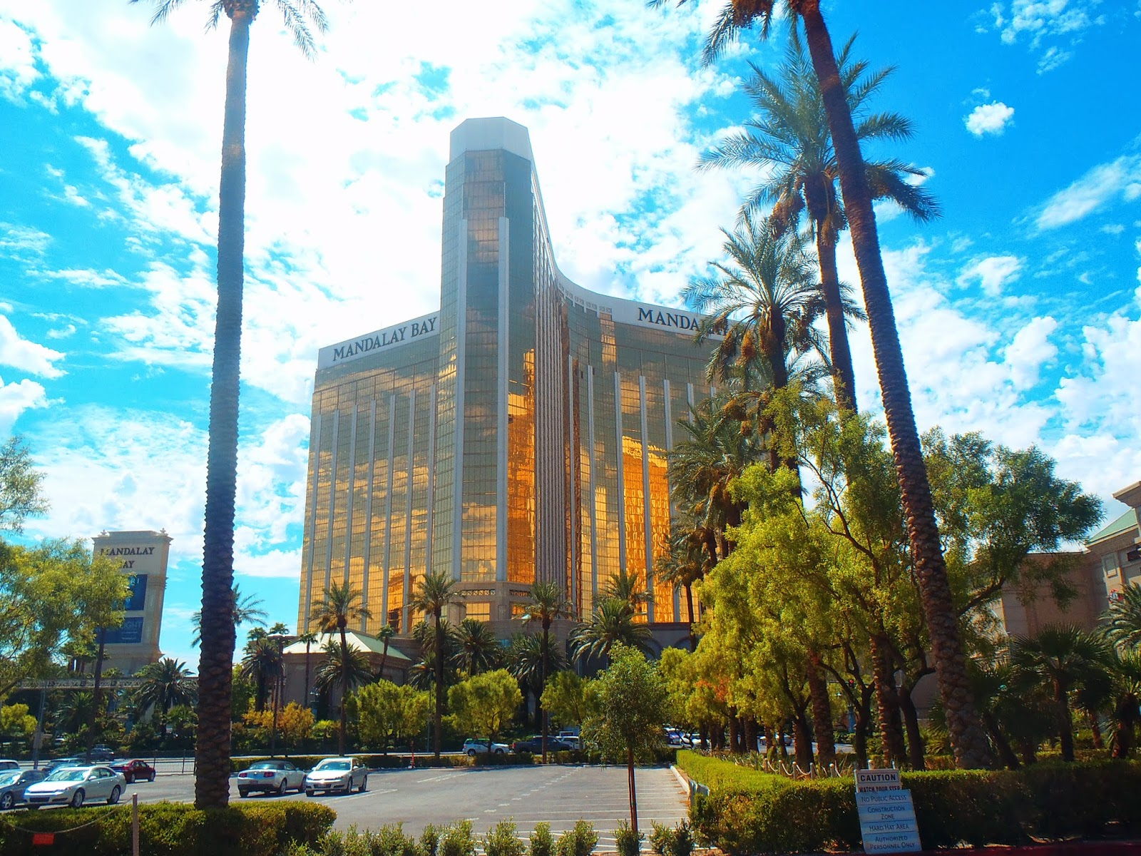 view of the hotel through some palm trees