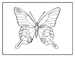 Elegant Butterfly For Coloring Sheet