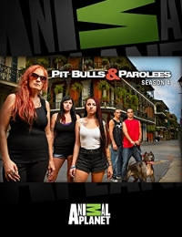Pit Bulls and Parolees 4 | Bmovies