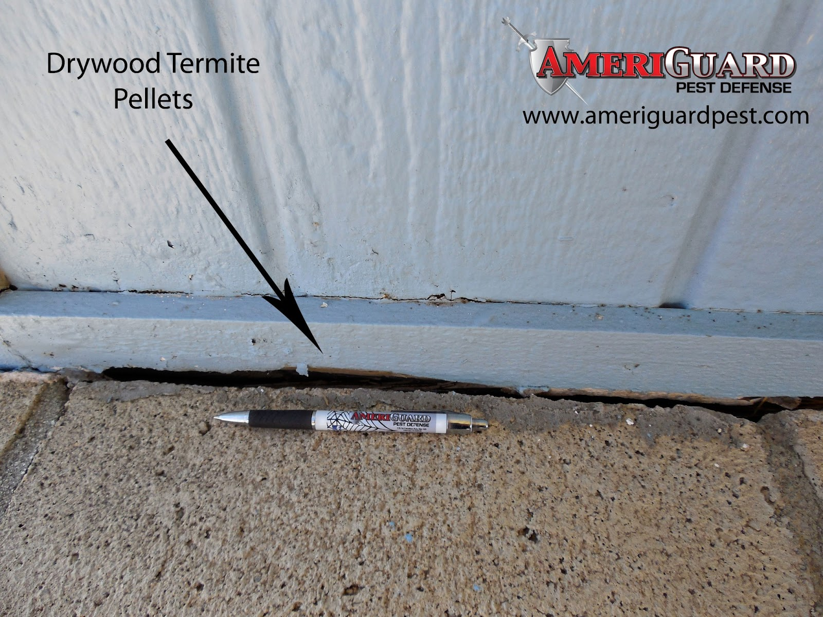 Home Guard Termite Pest And Home Services