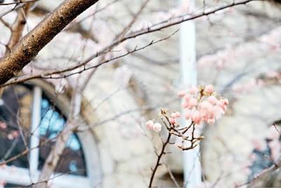 4月のミヤケミホの出勤日