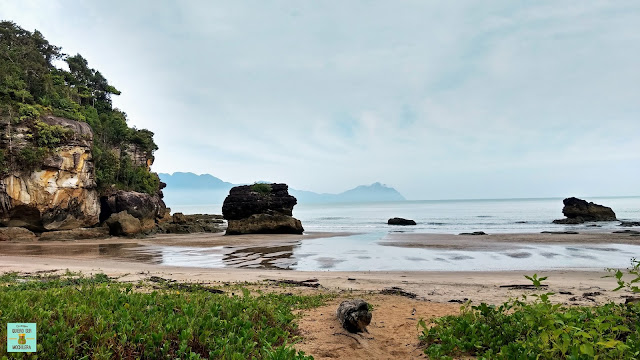 Teluk Paku en Parque Nacional de Bako (Borneo, Malasia)