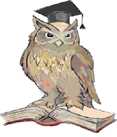 An owl with an open book, wearing a hat