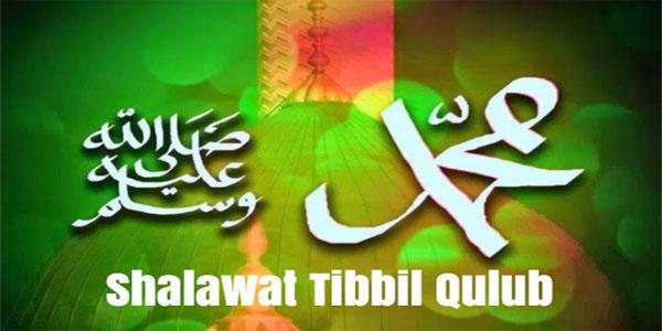 Shalawat Tibbil Qulub, Doa Menghindari Berbagai Penyakit