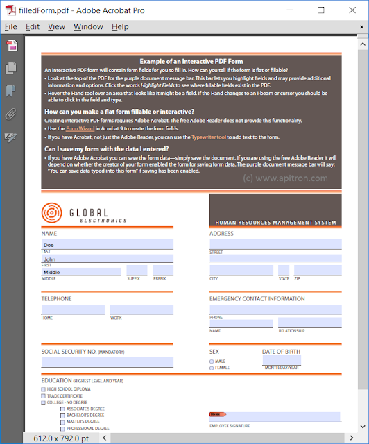 Pic. 2 PDF form filled using FDF