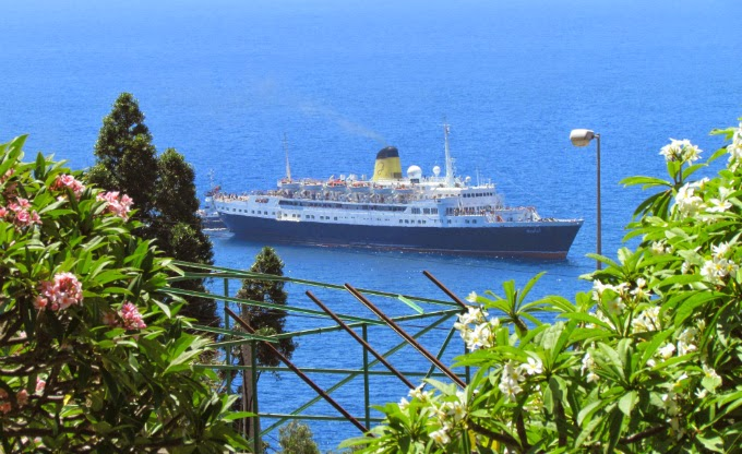 Funchal cruise ship arrives between flowers