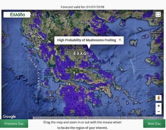 Ιούλιος και άγρια μανιτάρια στην Ελλάδα γίνεται;