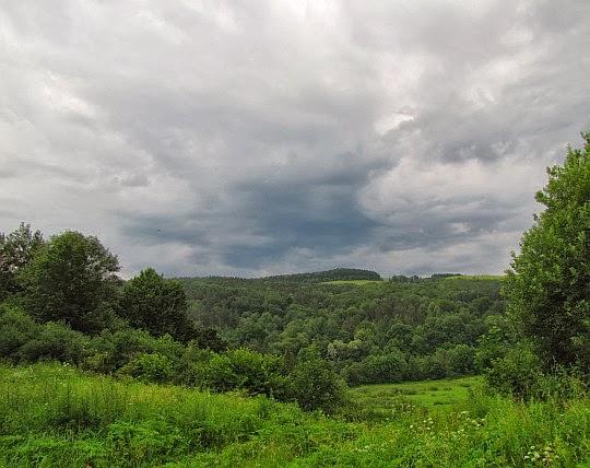 Zielone wzgórza nad Wisłokiem