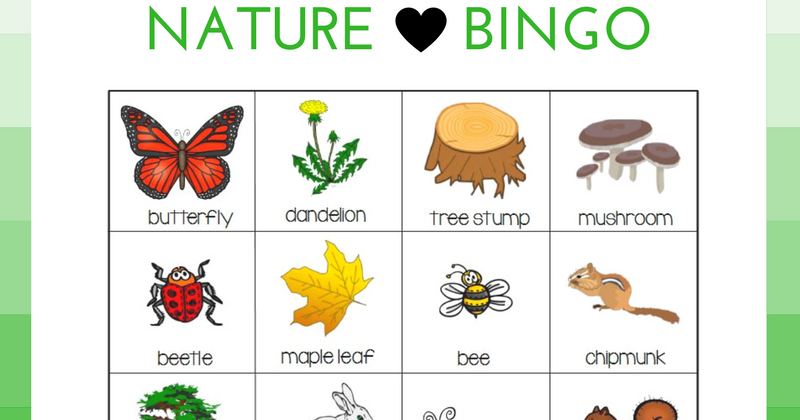 Nature Bingo on Insect Worksheet