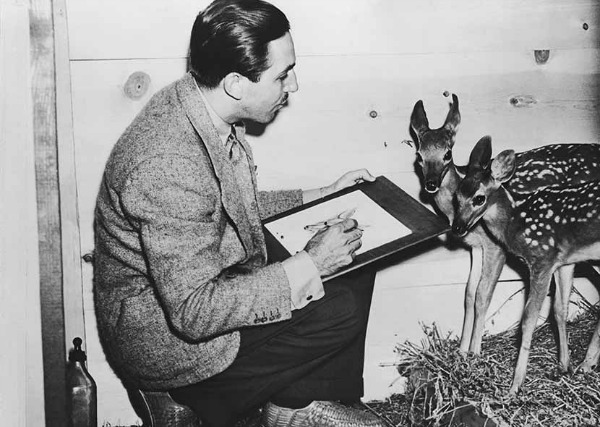 walt disney drawing bambi