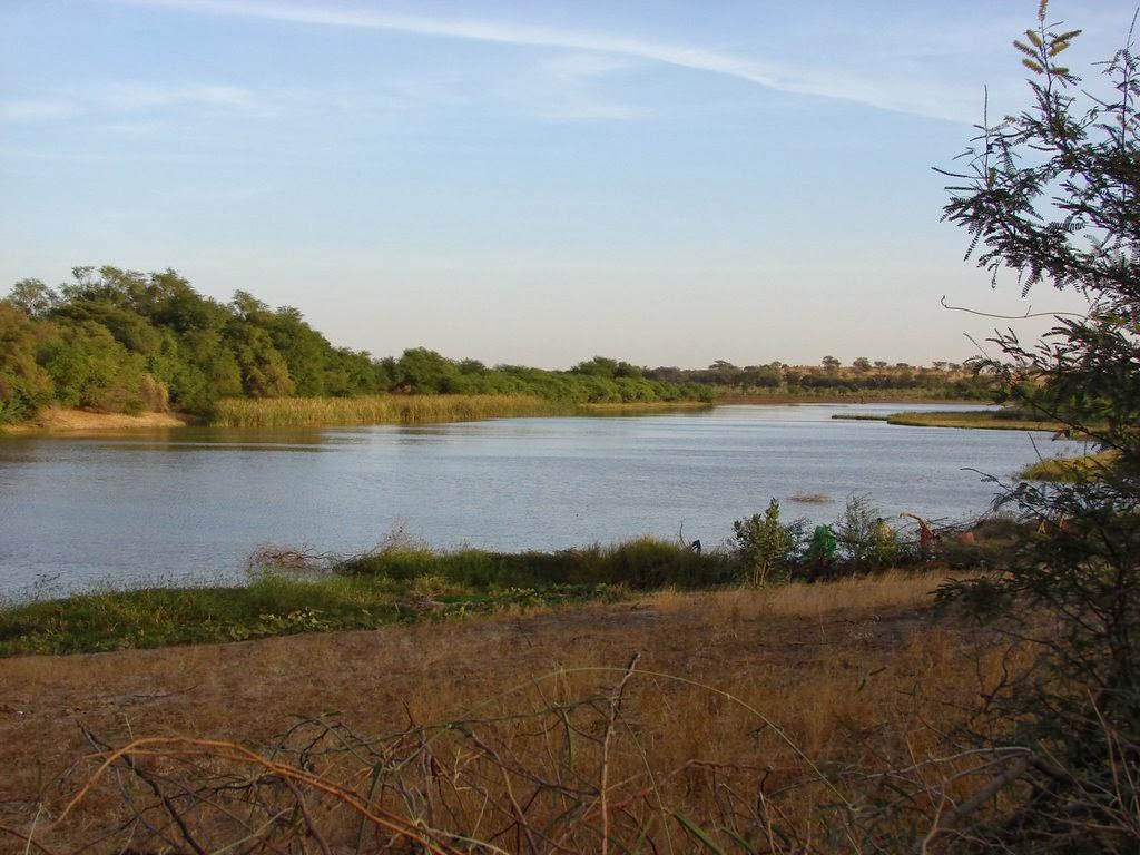 Rio Senegal na África