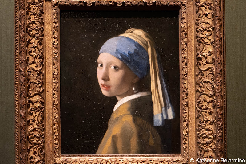 The Hague Mauritshuis Girl with the Pearl Earring Netherlands Day Trips from Amsterdam or Rotterdam