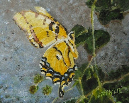 """A Time to Dance Solo"" 8""x10"" detail of oil on gessobord, ©2015 Tina M. Welter  A detail of a single yellow swallowtail butterfly from an original oil painting."