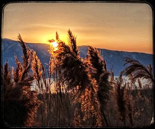 Sunset on the Utah Lake Shore Trail