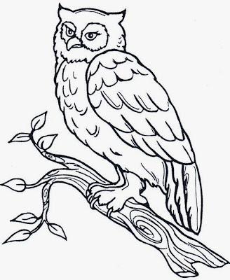 Maestra de Primaria: Dibujos de Búhos para colorear, para imprimir y ...