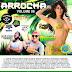 CD ARROCHA VOL 06 2017 (DJ LUYS D'NIGHT & BRUNINHO GDC)