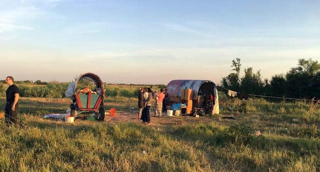 Tabara de nomazi depistata pe un camp de langa Timisoara