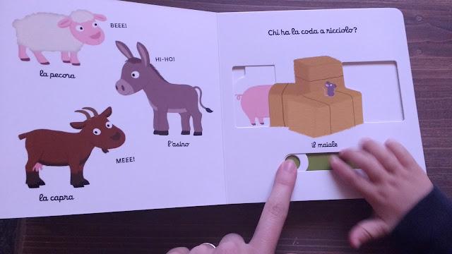 cartonati primi libri