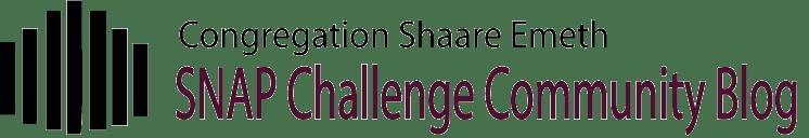 Congregation Shaare Emeth Snap Challenge Community Blog