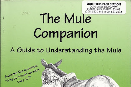The Mule Companion A Guide To Understanding The Mule
