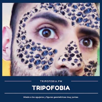 fotos de tripofobia