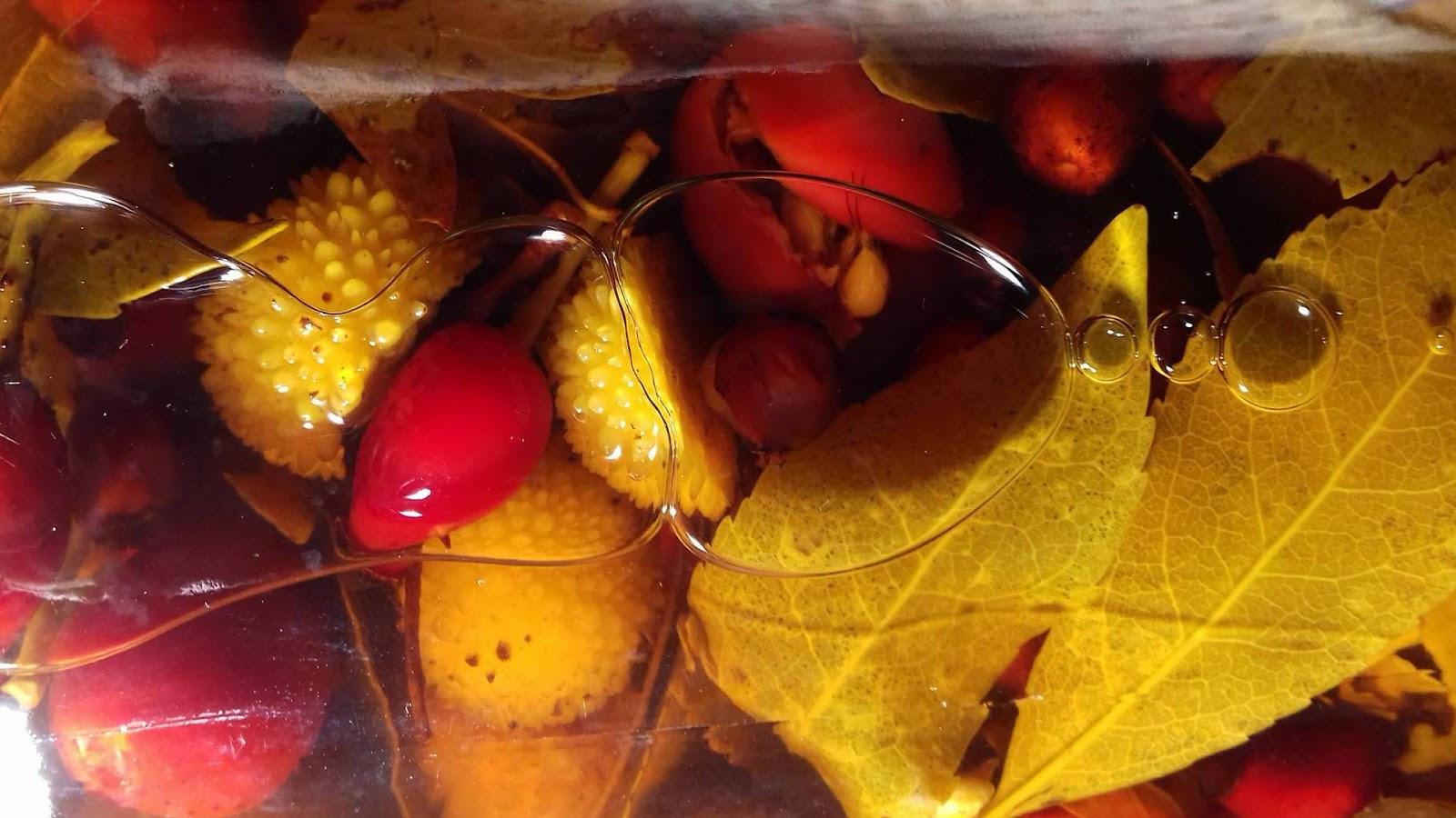 aceto di mele per la prostata