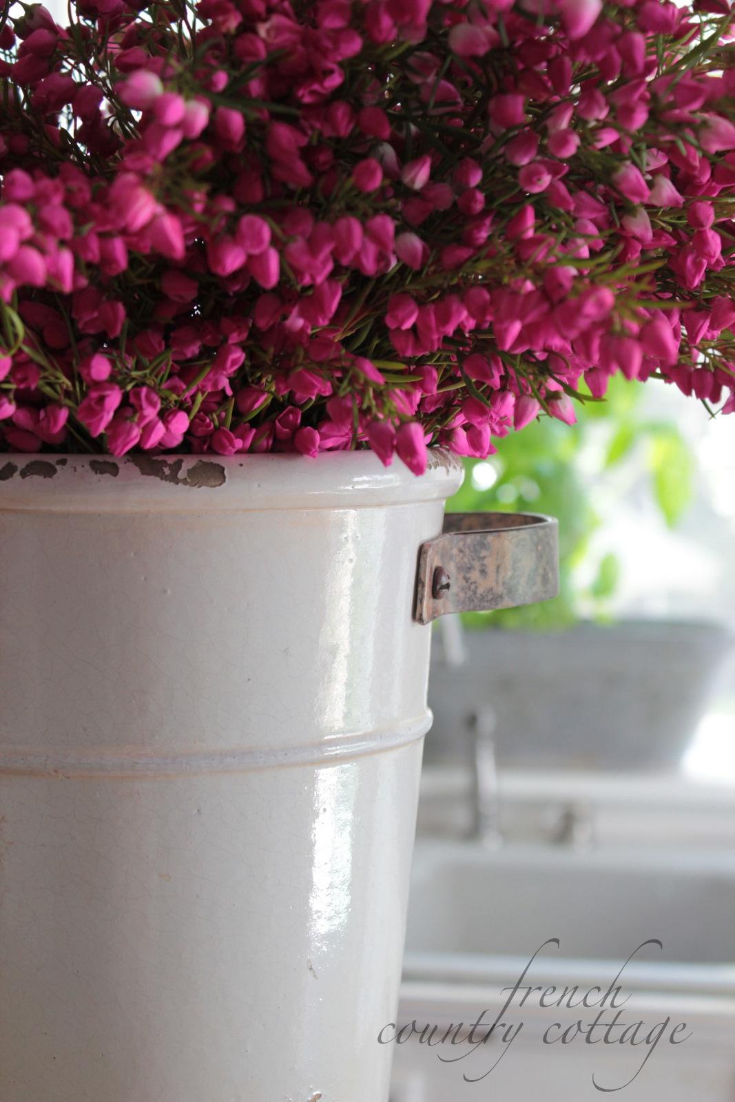 White flower bucket french country cottage white flower bucket mightylinksfo